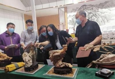 2020中國·涉縣第二屆旅游文創設計大賽成功舉辦
