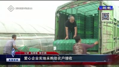 愛心企業實地采購助農戶增收
