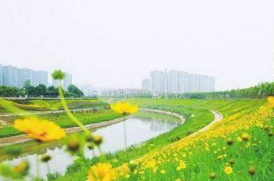 新增海绵城市、林荫停车场等新理念 河北星级公园评定有了新标准