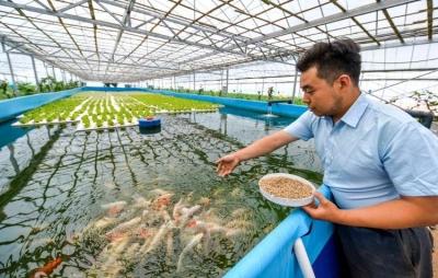 """邯郸:科技赋能种植养殖 农业生产更""""智慧"""""""