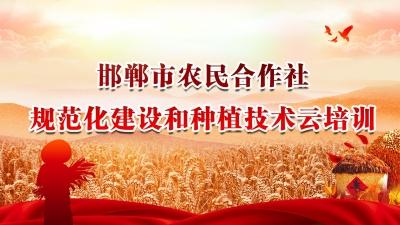 【直播】邯郸市农民合作社规范化建设和种植技术云培训