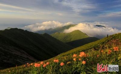 """6月5日世界环境日 河北这些""""国字号""""自然保护区你都知道吗?"""