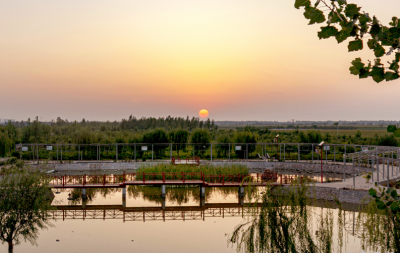 邯郸:大力推进农村人居环境整治