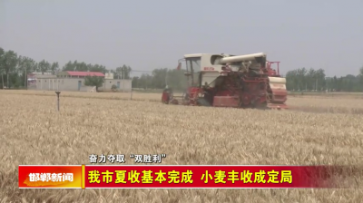邯郸V视|我市夏收基本完成 小麦丰收成定局