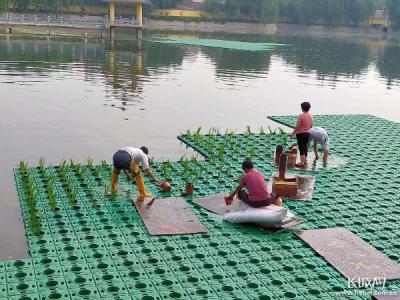 【三創四建】磁縣:建設生態城市水系 塑造親水宜居空間