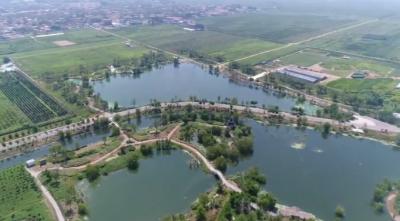 邯郸肥乡区:让水乡河湖重现碧波美景