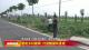 """邯鄲V視 系列報道《四好農村公路的""""曲周特色""""》(一) 建成鄉村路網 打造靚麗風景線"""