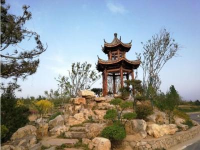 邯郸丛台区:加快构筑绿色屏障 增进群众生态福祉