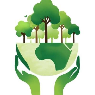 新修订《中华人民共和国森林法》7月1日起实施