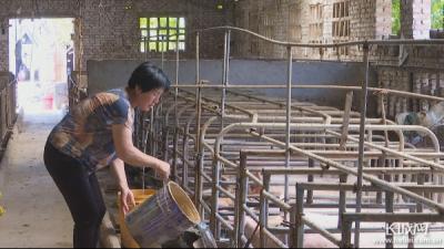 【小康看老乡Vlog】邯郸曲周李美英:发展养殖业 奔向新生活