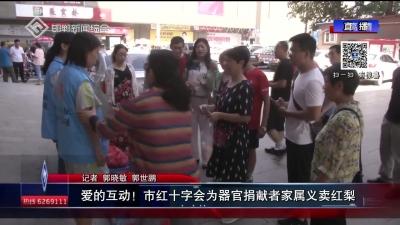 愛的互動!市紅十字會為器官捐獻者家屬義賣紅梨