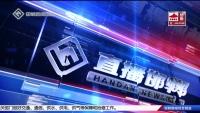 直播邯郸 08-06