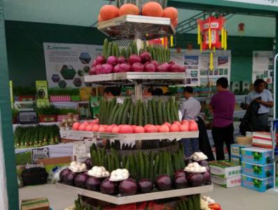 河北省(京津冀)蔬果生鲜产销对接高峰论坛举办