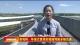 景觀橋:環繞式景觀實現園博園多維交通