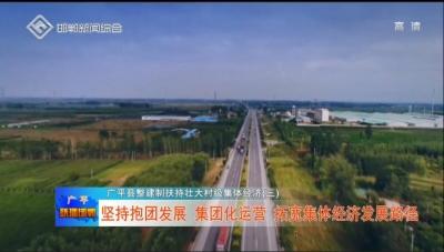 广平县整建制扶持壮大村级集体经济(三)  坚持抱团发展 集团化运营 拓宽集体经济发展路径