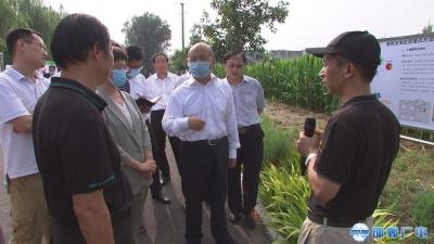 邯郸V视   高宏志到曲周县调研氨氮减排工作