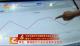"""【育新机 开新局 奋力夺取""""双胜利""""】河北:新动能为工业企业复苏注活力"""