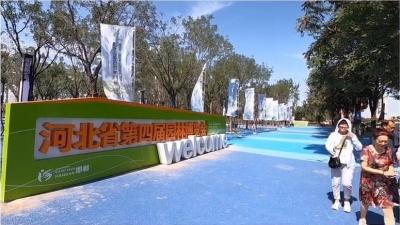 邯郸V视|邯郸:园博会惊艳启幕