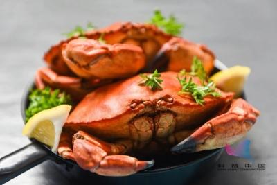 死蟹不能吃?母蟹比公蟹好?今天解释清楚了……