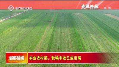 农业农村部:秋粮丰收已成定局