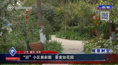 """邯郸:""""旧""""小区展新颜 景美如花园"""