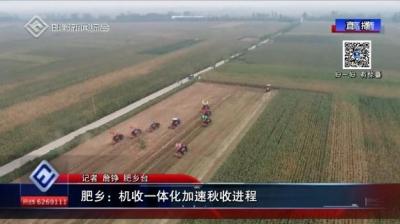 肥乡:机收一体化加速秋收进程