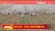 农业农村部:农民收入提前实现翻番目标