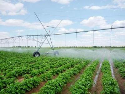 邯郸高效节水灌溉面积逾530万亩