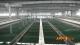 铁西水厂净水系统升级改造工程预计本月底完工投用