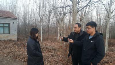 """曲周县自然资源和规划局  开展""""双随机、一公开""""抽查"""