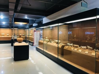 曲周博物馆迎来非洲客人