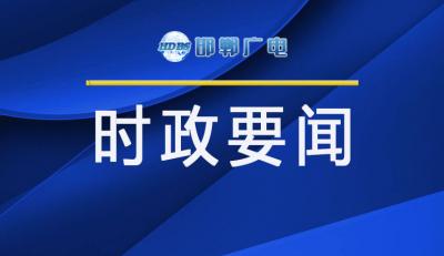 邯郸V视|全市疫情防控工作视频调度会议召开