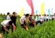 邯郸:全市国家地理标志证明商标达25个