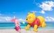 邯郸V音|小熊和小猪