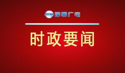 邯郸V视|张维亮调度国企改革工作