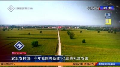 农业农村部:今年我国将新建1亿亩高标准农田