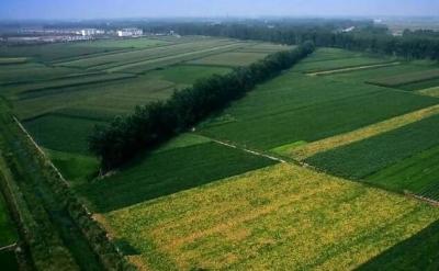 第三批国家农村产业融合发展示范园创建名单公布  邯郸市2家单位入选