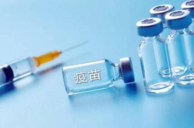 """邯郸紧盯""""三类单位""""确保疫苗无隙监管"""