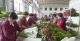 峰峰礦區:發展鮮切花產業 助力鄉村振興
