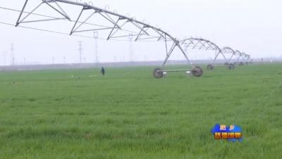 肥鄉:淺層地下水回升值連續十個月全省第一