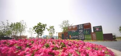 北郊生態園 蔬菜與藝術的結合