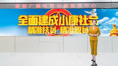 邯鄲V視|百年黨史關鍵詞(四十九)——小康社會