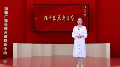 邯鄲V視|百年黨史關鍵詞(九十四)——經濟發展新常態