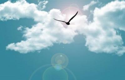 看見·夢想丨想走得更遠,就要知道自己為什麼向前