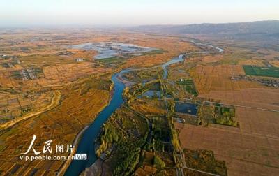 甘肅張掖:黑河兩岸秋景如畫
