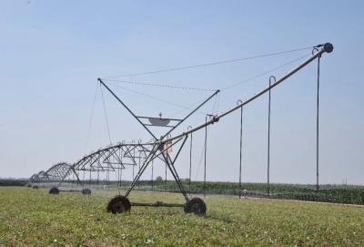 成安:強農業 美農村 富農民 一幅鄉村振興巨幅畫卷正在展開
