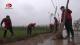 【临漳新闻】 我县部分县直单位到柳园镇开展义务植树活动