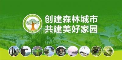 创建国家森林城市 建设美丽宜居临漳 ——临漳县创森办致全县居民的倡议书