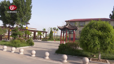 """【临漳新闻】 """"三化""""让全县农村人居环境靓丽碟变"""