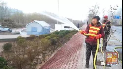 """广平县让绿化苗木""""温暖过冬"""""""
